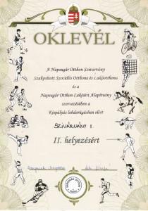 OKLEVÉL-FOCI